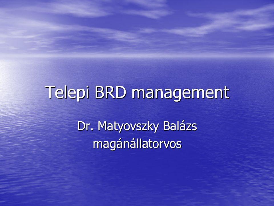 Dr. Matyovszky Balázs magánállatorvos