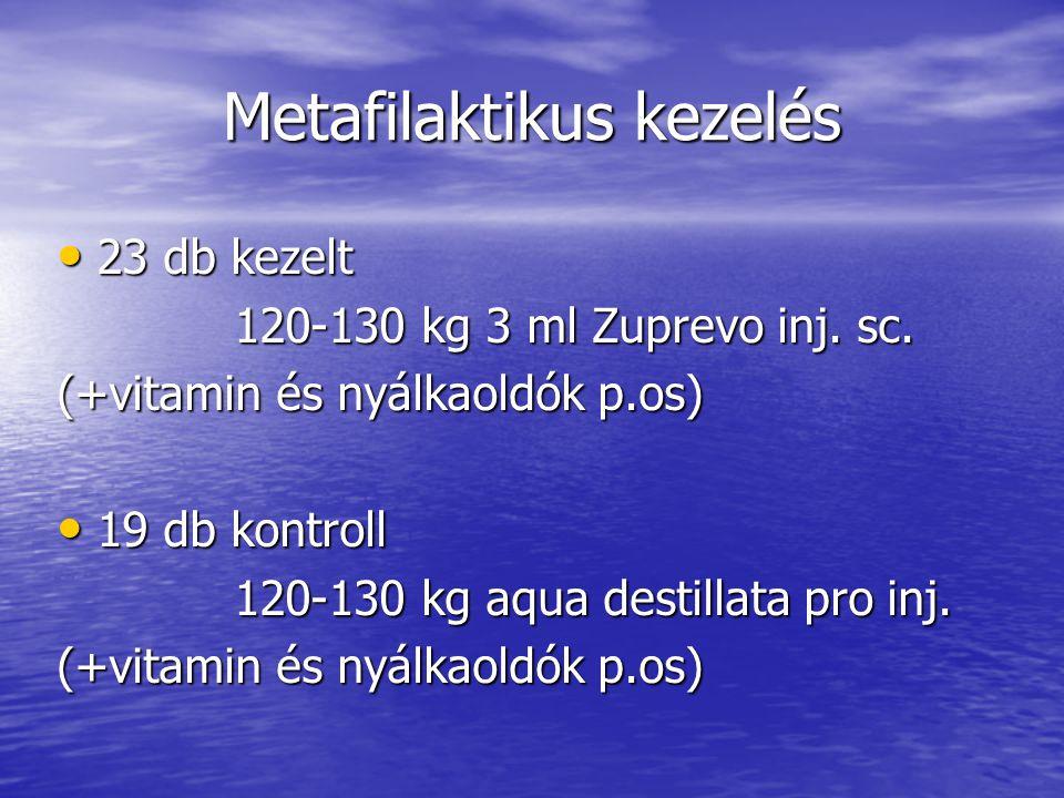 Metafilaktikus kezelés