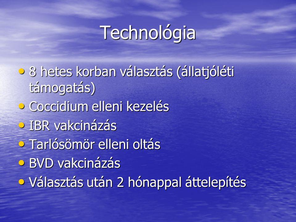 Technológia 8 hetes korban választás (állatjóléti támogatás)