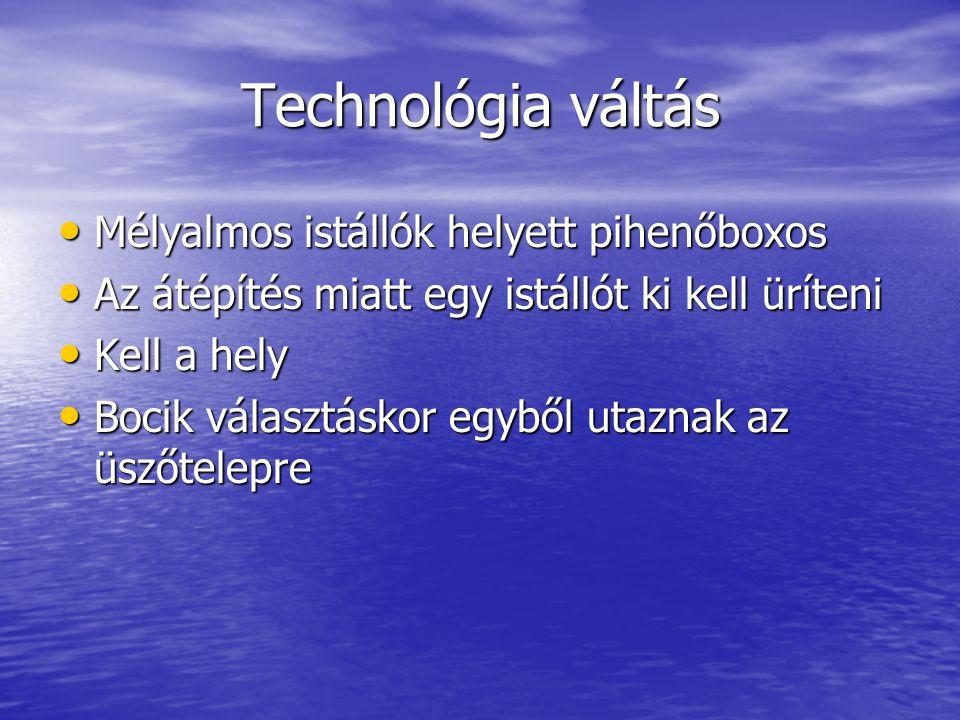 Technológia váltás Mélyalmos istállók helyett pihenőboxos