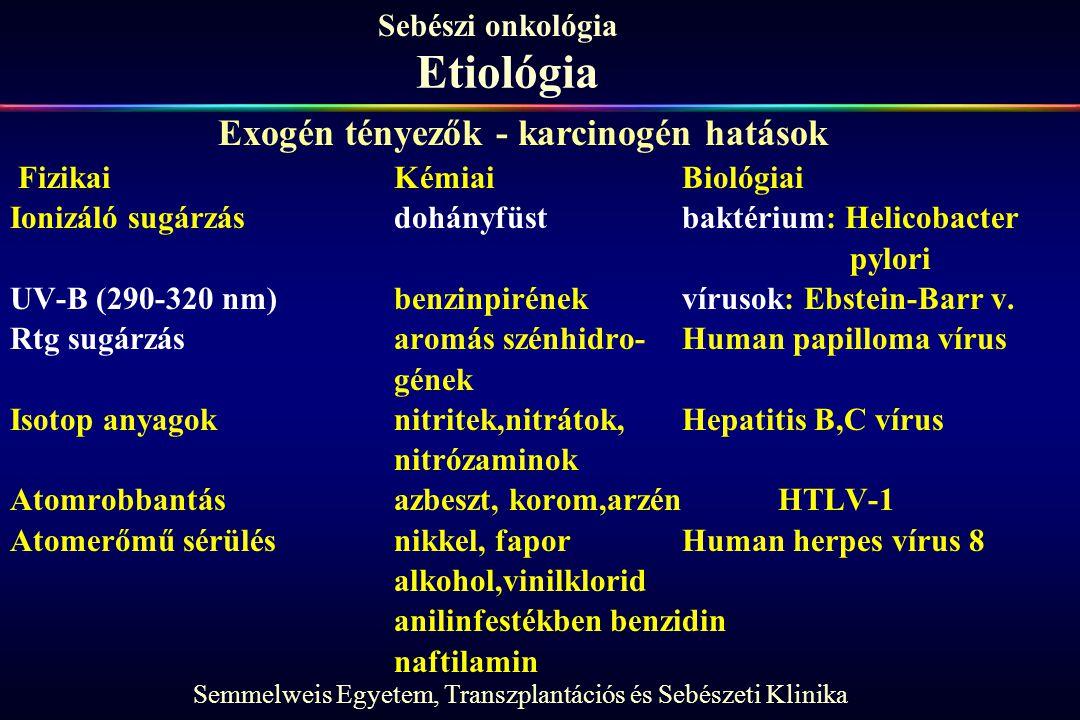 Etiológia Exogén tényezők - karcinogén hatások