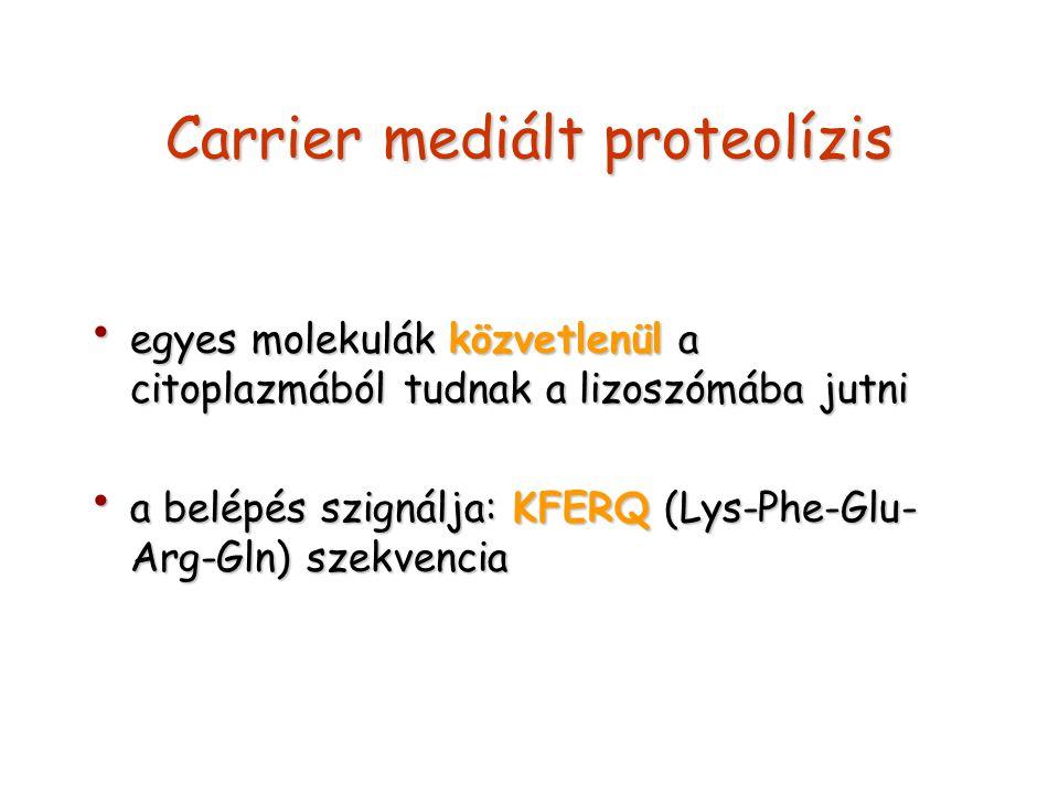 Carrier mediált proteolízis