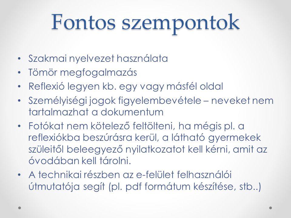 Fontos szempontok Szakmai nyelvezet használata Tömör megfogalmazás