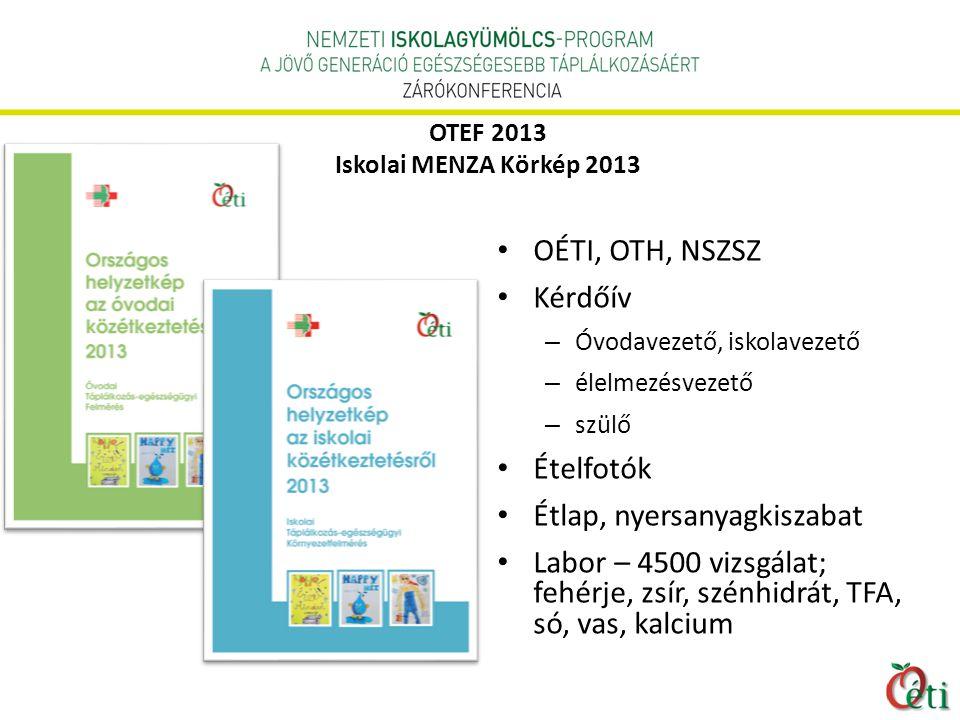 OTEF 2013 Iskolai MENZA Körkép 2013