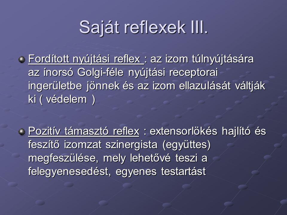 Saját reflexek III.