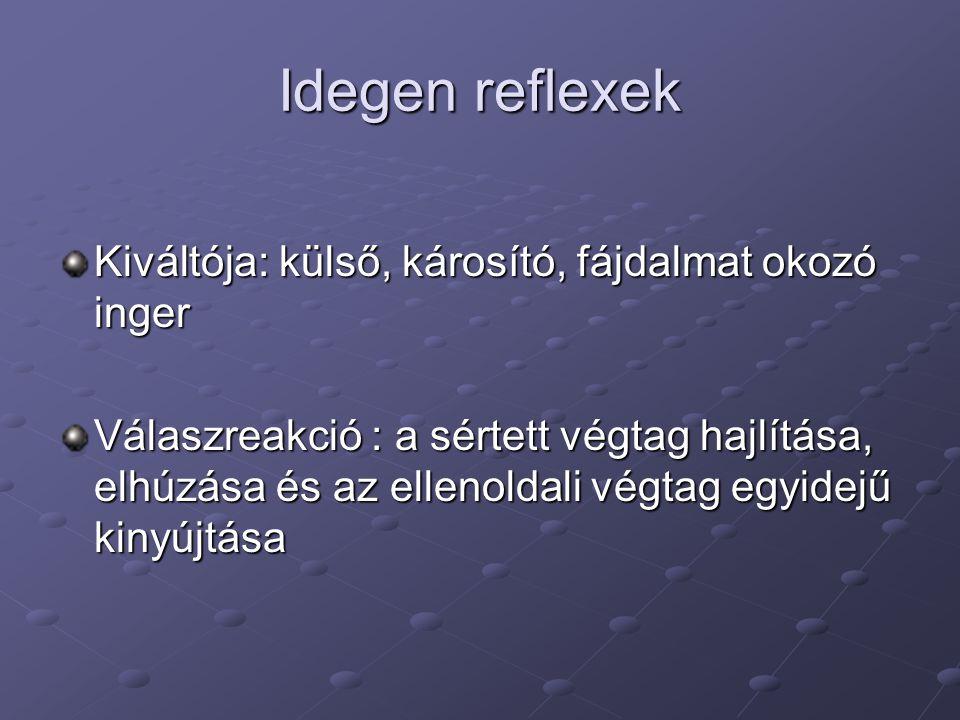 Idegen reflexek Kiváltója: külső, károsító, fájdalmat okozó inger