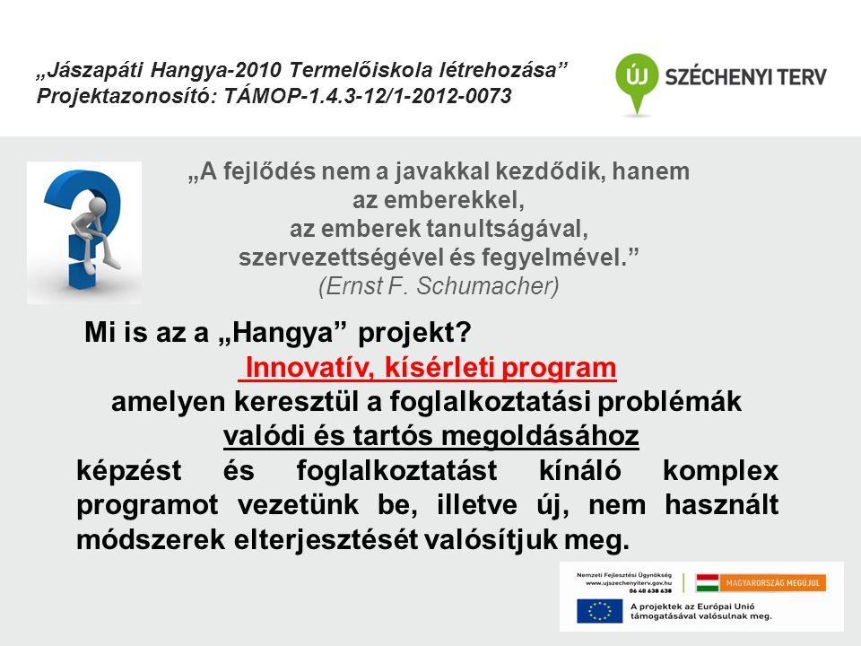 """Mi is az a """"Hangya projekt Innovatív, kísérleti program"""