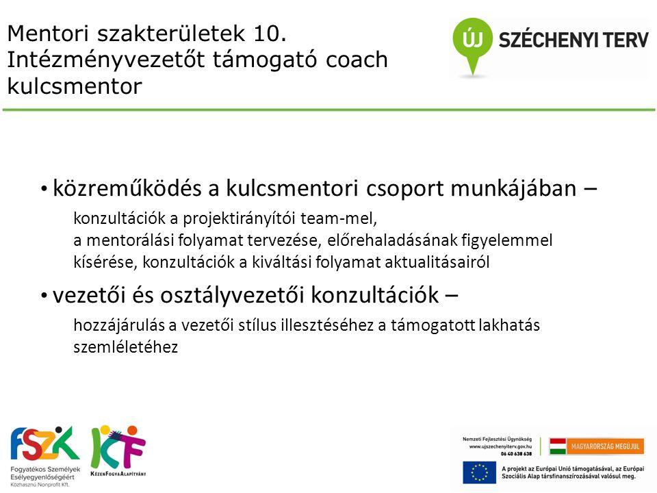 Mentori szakterületek 10. Intézményvezetőt támogató coach kulcsmentor