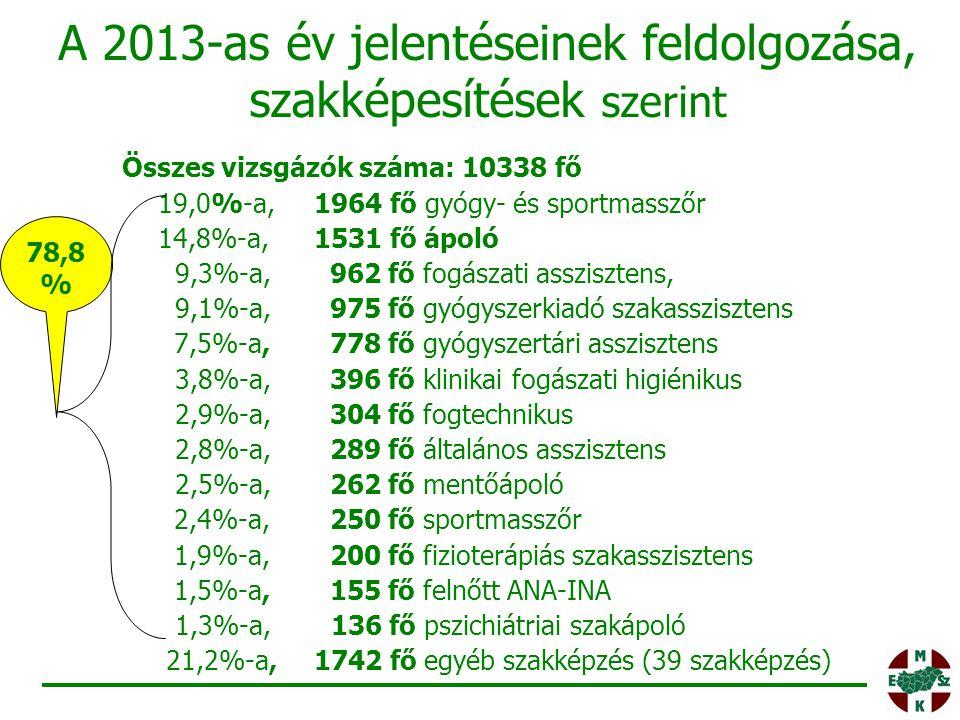 A 2013-as év jelentéseinek feldolgozása, szakképesítések szerint