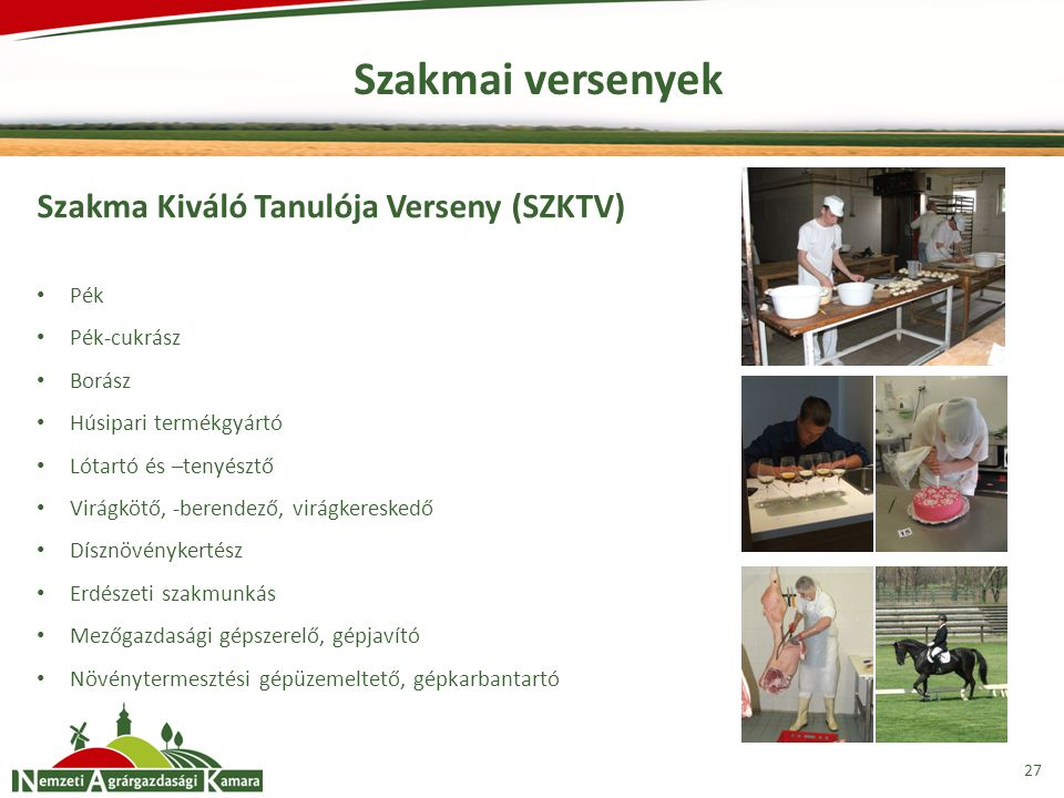 Szakmai versenyek Szakma Kiváló Tanulója Verseny (SZKTV) Pék