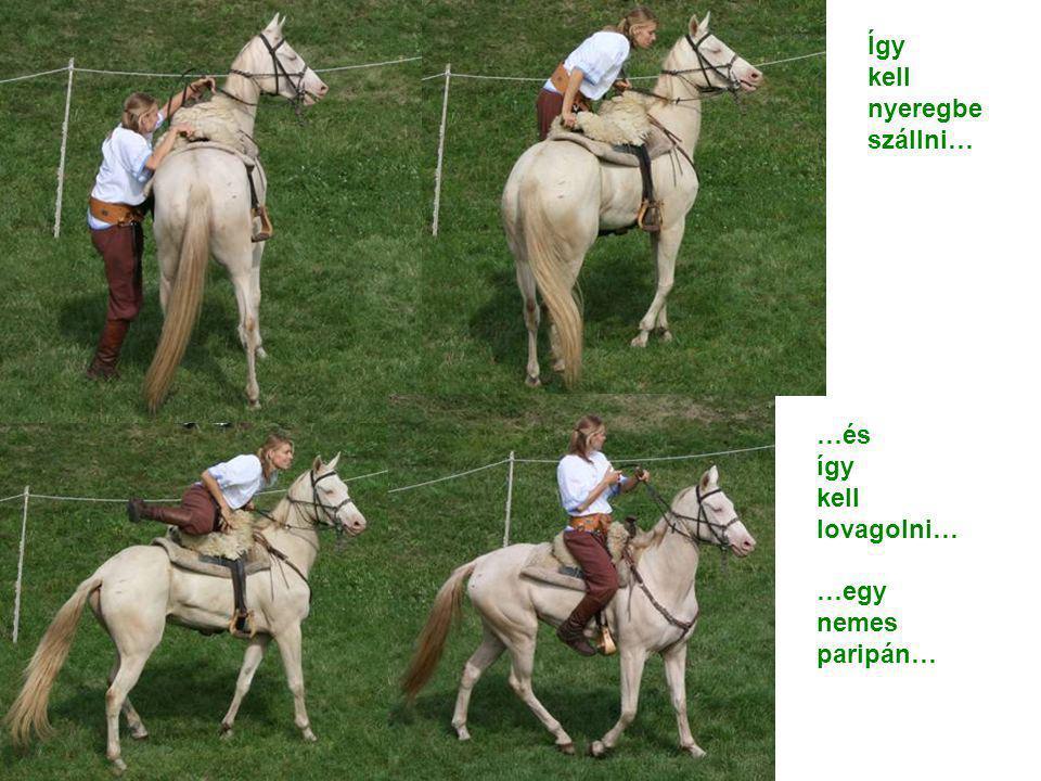 Így kell nyeregbe szállni… …és így kell lovagolni… …egy nemes paripán…
