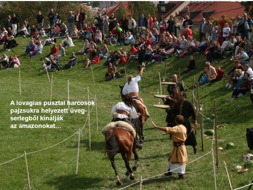 A lovagias pusztai harcosok