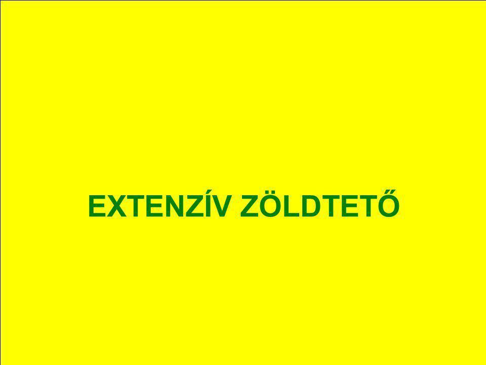 EXTENZÍV ZÖLDTETŐ