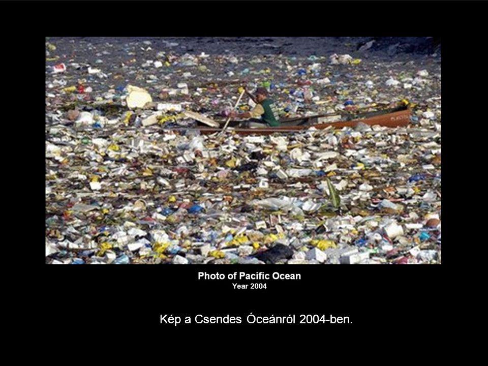 Kép a Csendes Óceánról 2004-ben.