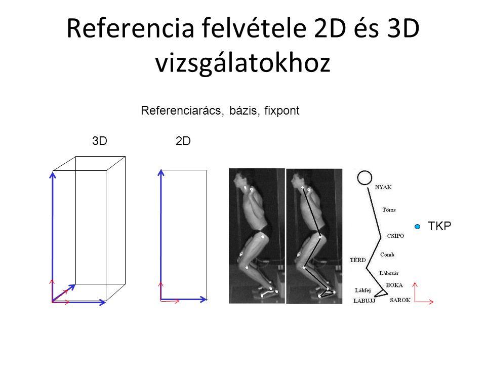 Referencia felvétele 2D és 3D vizsgálatokhoz