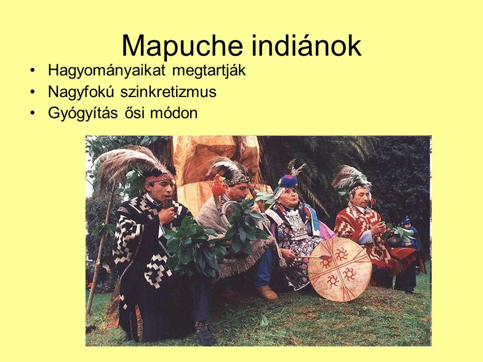 Mapuche indiánok Hagyományaikat megtartják Nagyfokú szinkretizmus
