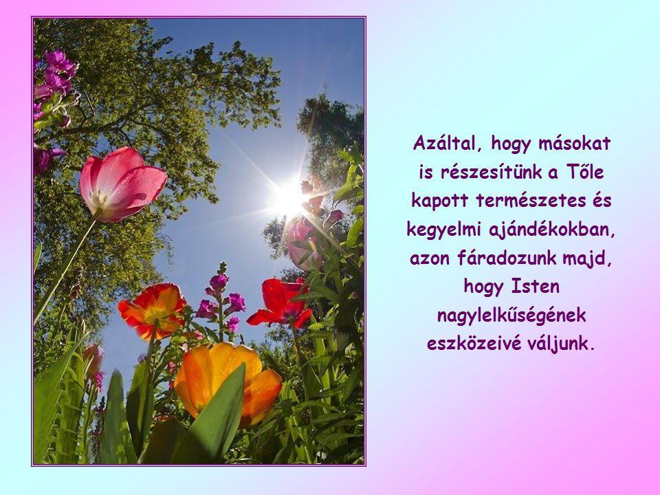 Azáltal, hogy másokat is részesítünk a Tőle kapott természetes és kegyelmi ajándékokban, azon fáradozunk majd, hogy Isten nagylelkűségének eszközeivé váljunk.