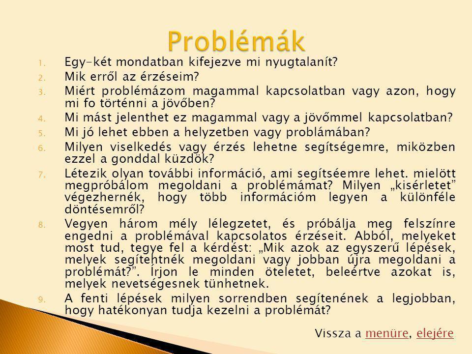 Problémák Egy-két mondatban kifejezve mi nyugtalanít