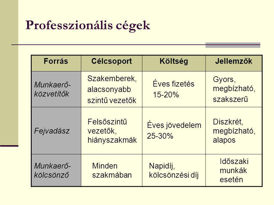 Professzionális cégek