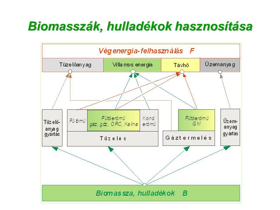 Biomasszák, hulladékok hasznosítása