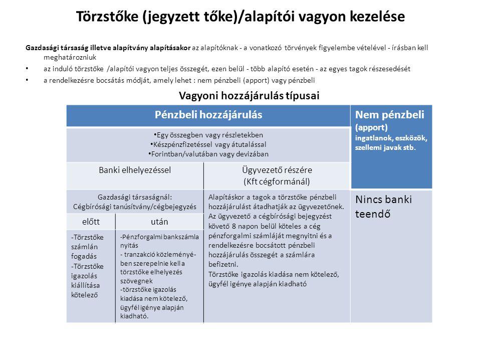 Törzstőke (jegyzett tőke)/alapítói vagyon kezelése
