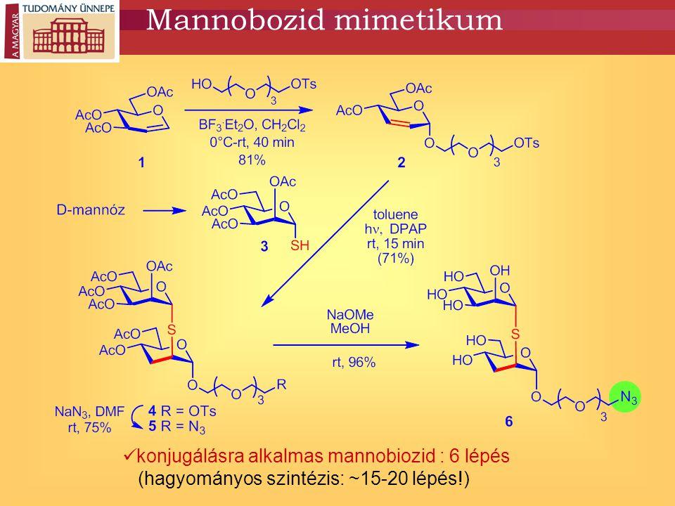 Mannobozid mimetikum konjugálásra alkalmas mannobiozid : 6 lépés