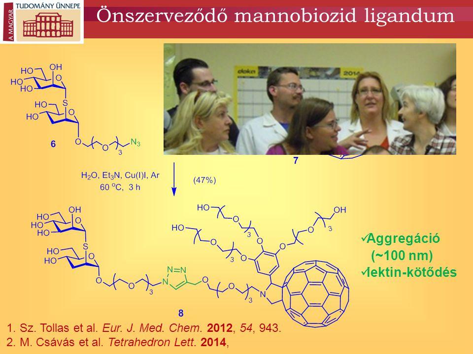 Önszerveződő mannobiozid ligandum