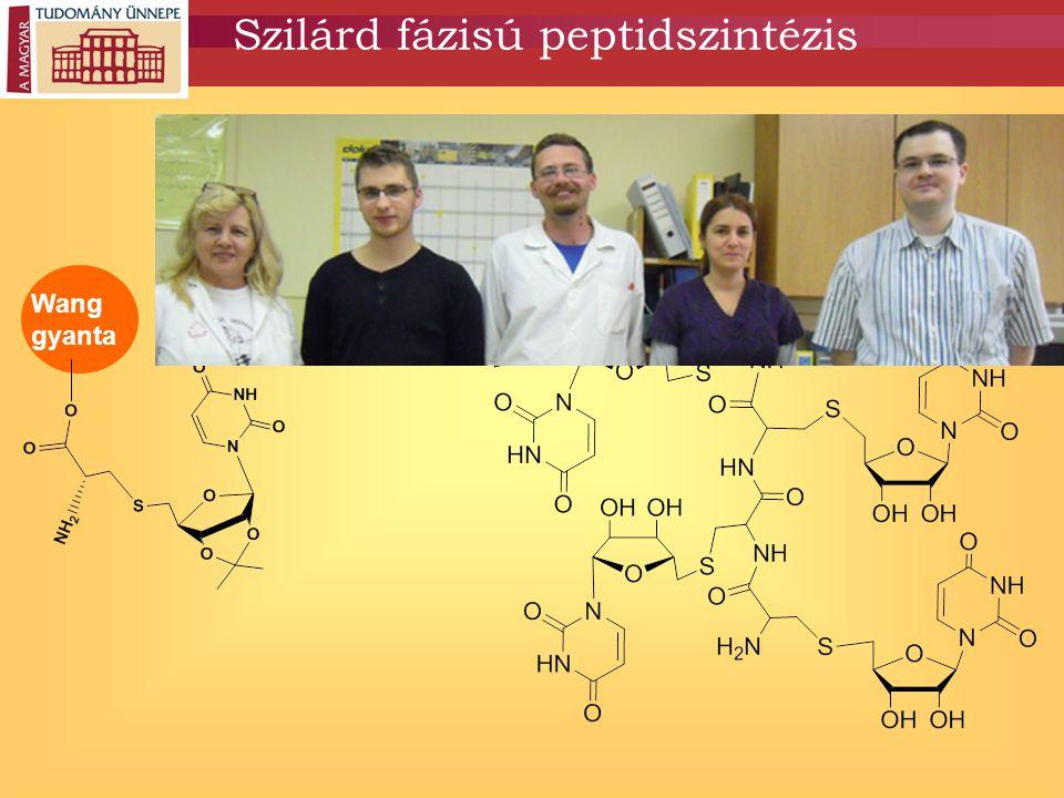 Szilárd fázisú peptidszintézis