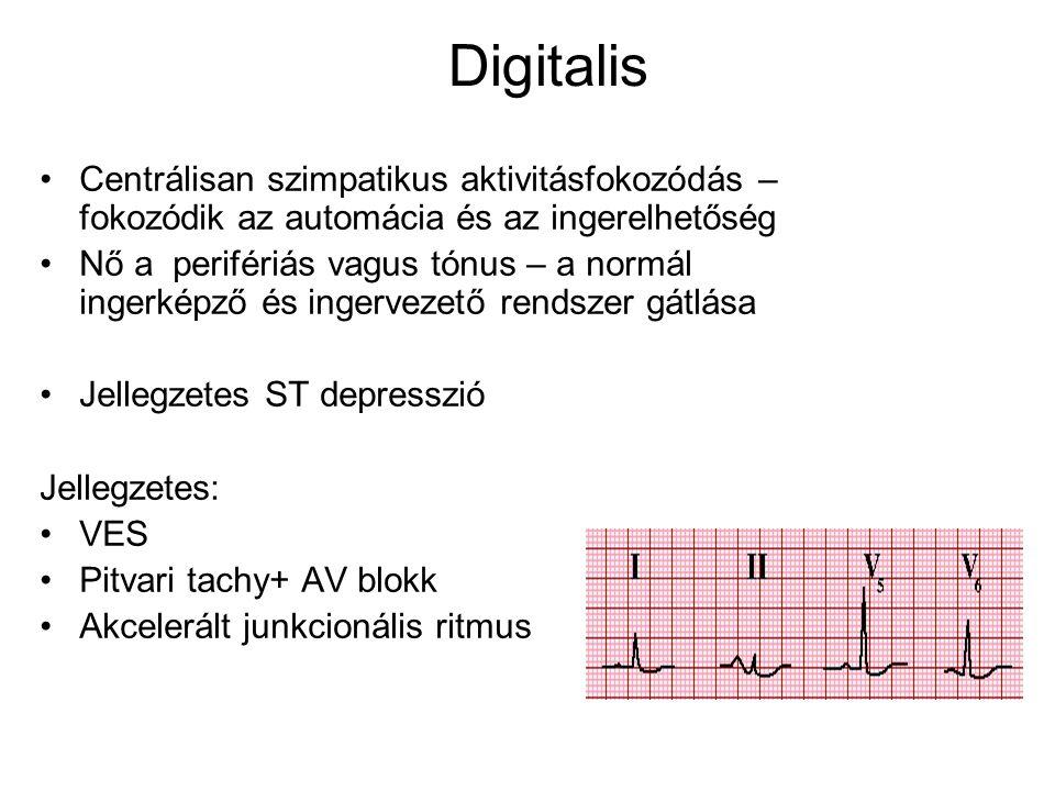 Digitalis Centrálisan szimpatikus aktivitásfokozódás – fokozódik az automácia és az ingerelhetőség.