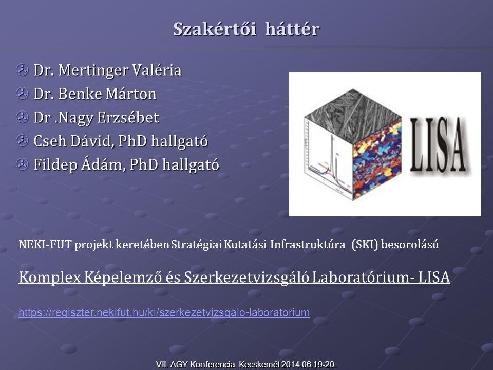 VII. AGY Konferencia Kecskemét 2014.06.19-20.