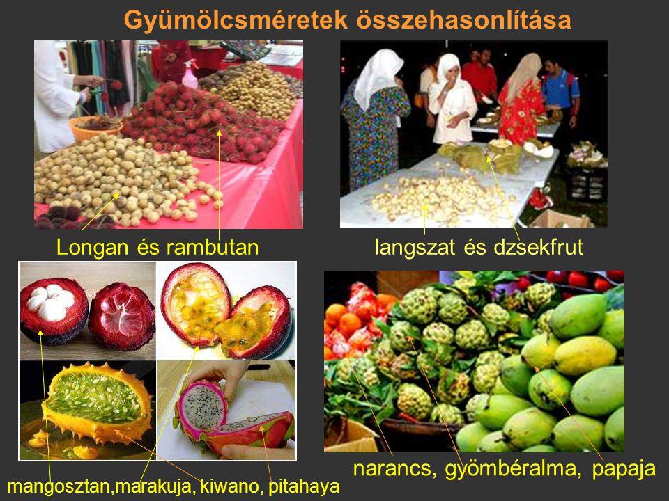 Gyümölcsméretek összehasonlítása