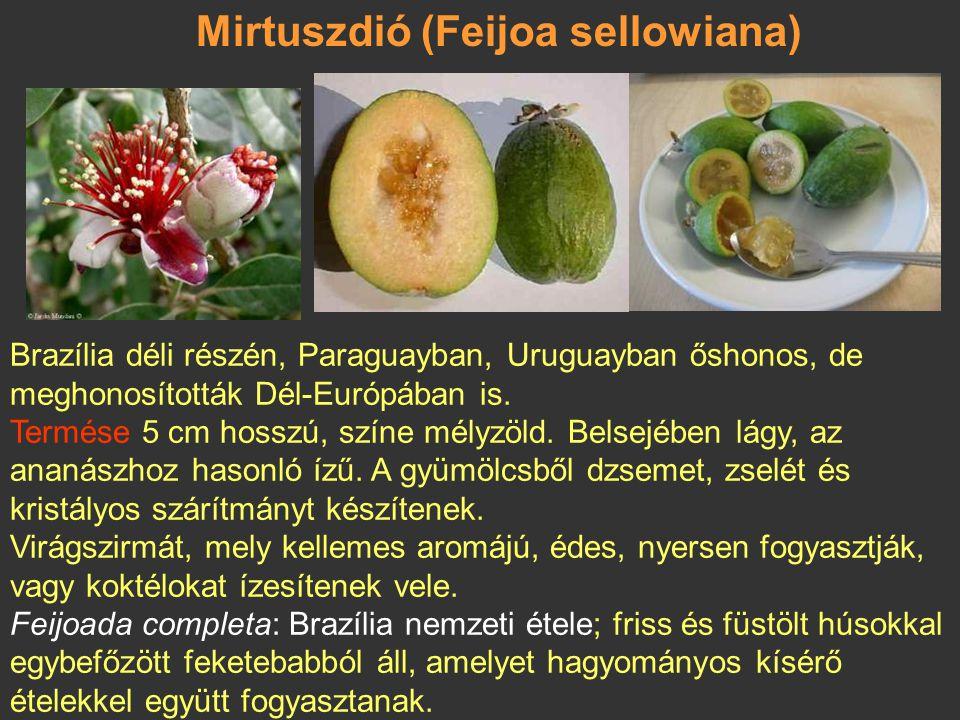 Mirtuszdió (Feijoa sellowiana)