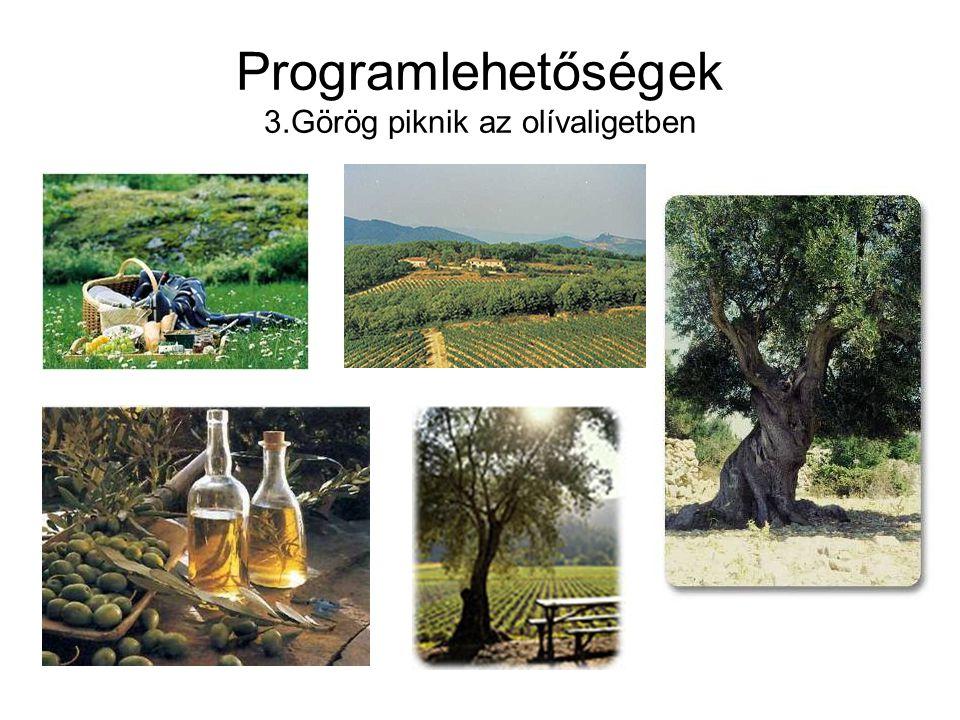 Programlehetőségek 3.Görög piknik az olívaligetben