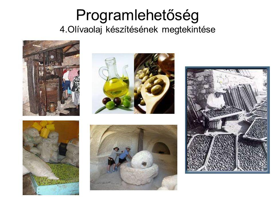 Programlehetőség 4.Olívaolaj készítésének megtekintése