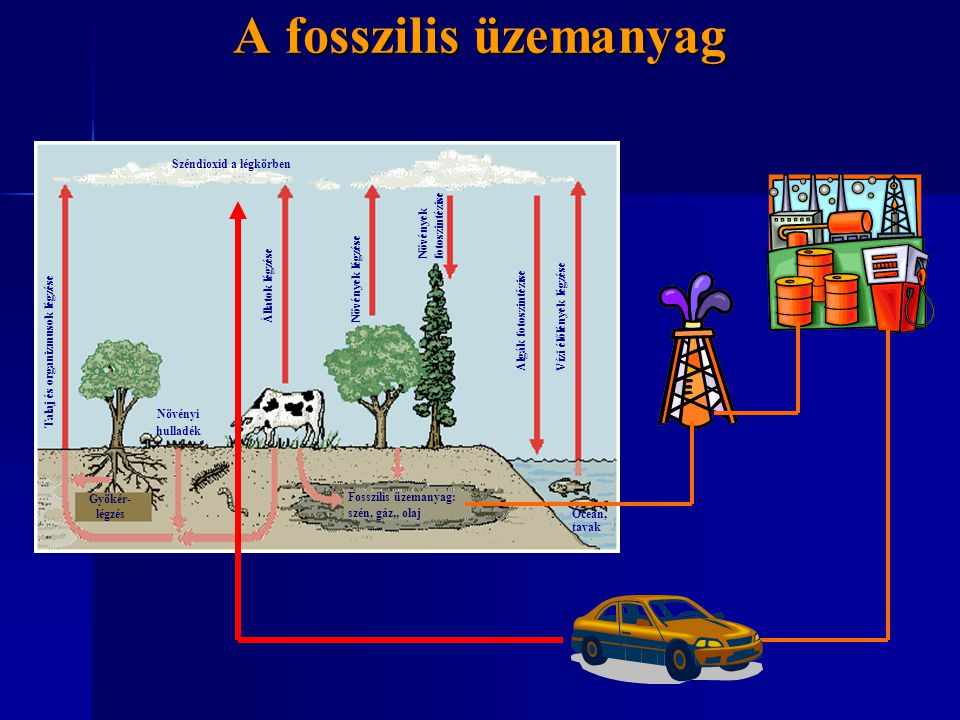 A fosszilis üzemanyag Széndioxid a légkörben fotoszintézise Növények