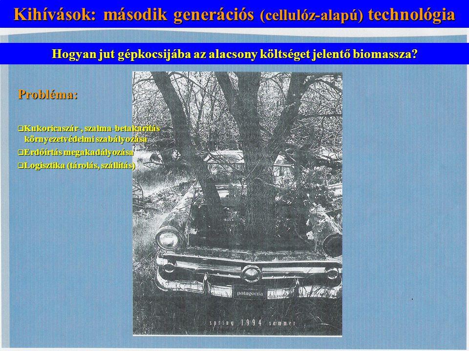 Kihívások: második generációs (cellulóz-alapú) technológia