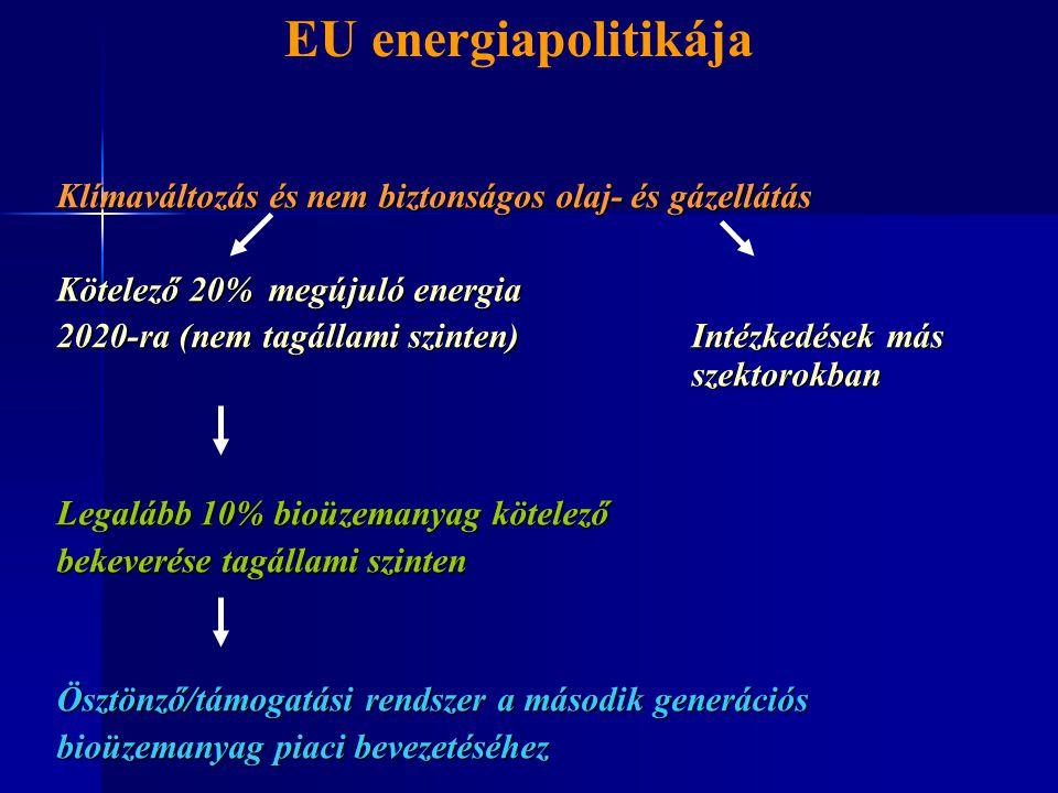 EU energiapolitikája Klímaváltozás és nem biztonságos olaj- és gázellátás. Kötelező 20% megújuló energia.