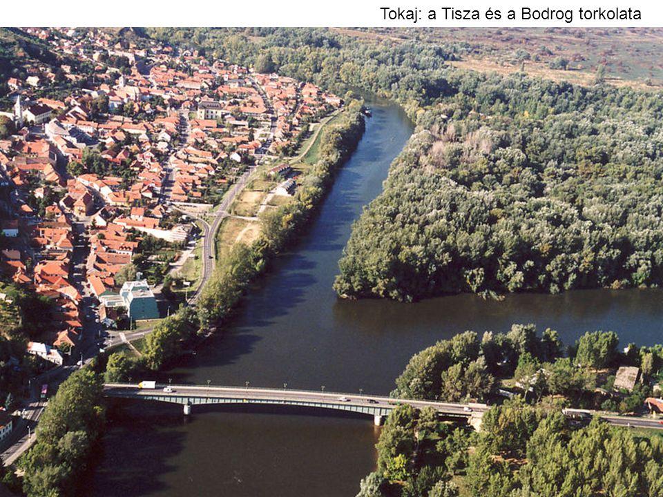 Tokaj: a Tisza és a Bodrog torkolata