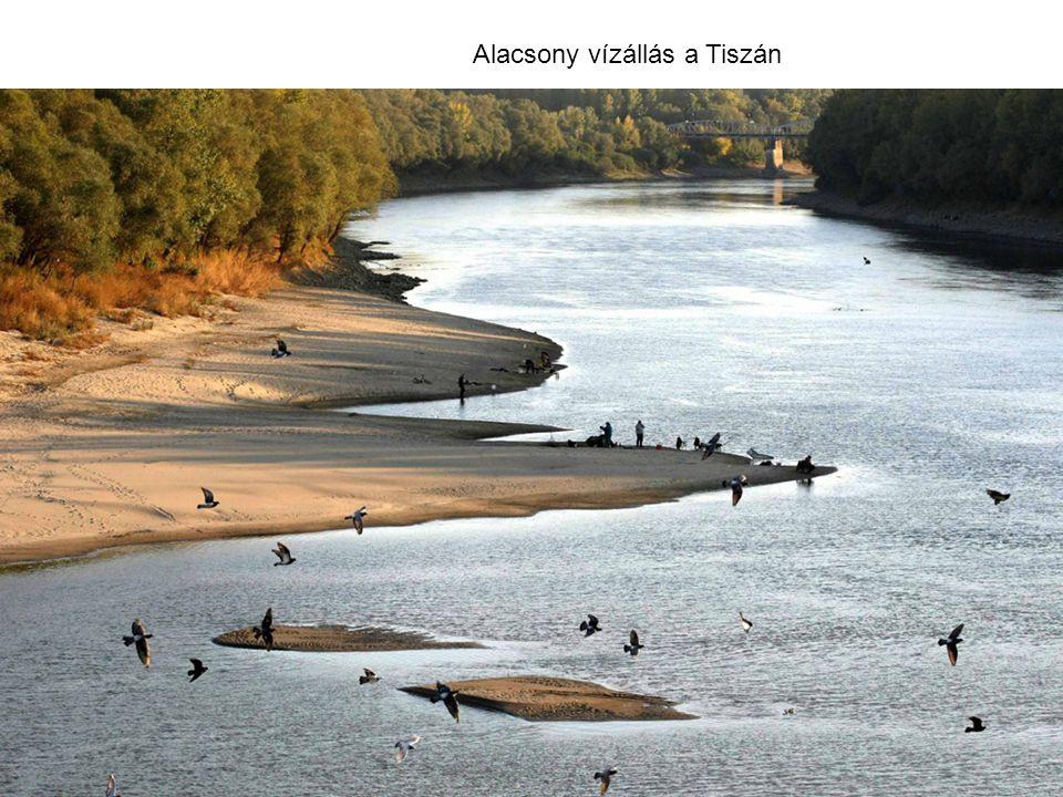 Alacsony vízállás a Tiszán