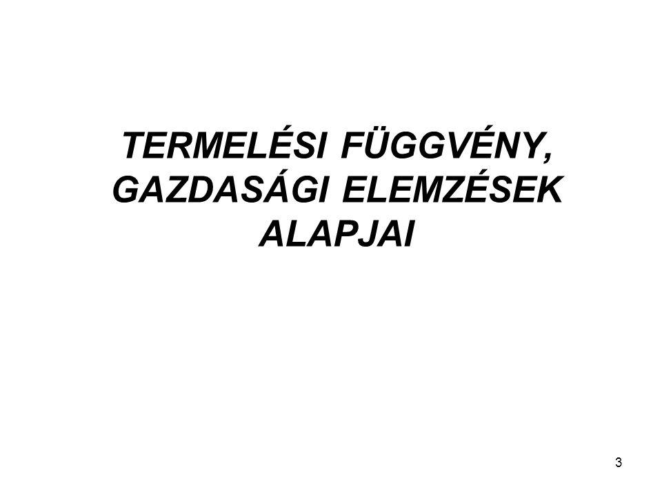 TERMELÉSI FÜGGVÉNY, GAZDASÁGI ELEMZÉSEK ALAPJAI