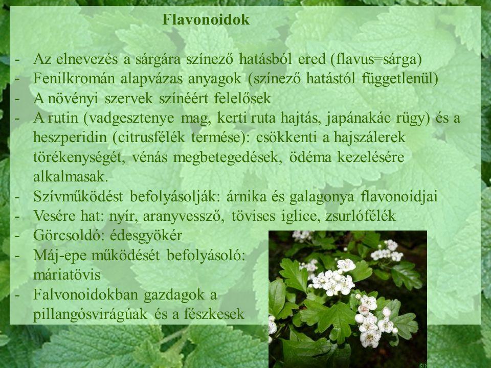 Flavonoidok Az elnevezés a sárgára színező hatásból ered (flavus=sárga) Fenilkromán alapvázas anyagok (színező hatástól függetlenül)