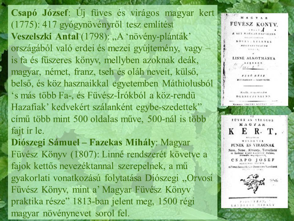 Csapó József: Új füves és virágos magyar kert (1775): 417 gyógynövényről tesz említést