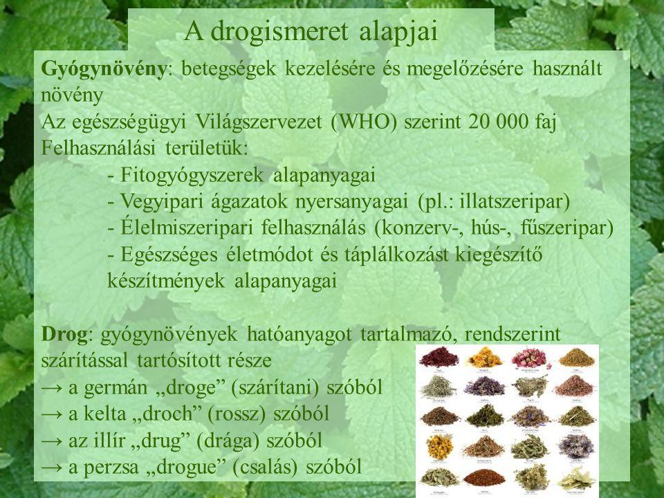 A drogismeret alapjai Gyógynövény: betegségek kezelésére és megelőzésére használt növény. Az egészségügyi Világszervezet (WHO) szerint 20 000 faj.