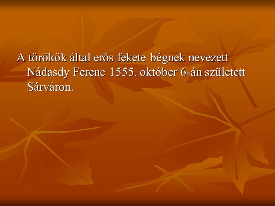 A törökök által erős fekete bégnek nevezett Nádasdy Ferenc 1555