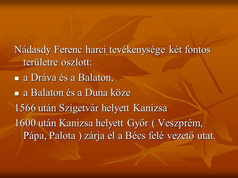 Nádasdy Ferenc harci tevékenysége két fontos területre oszlott: