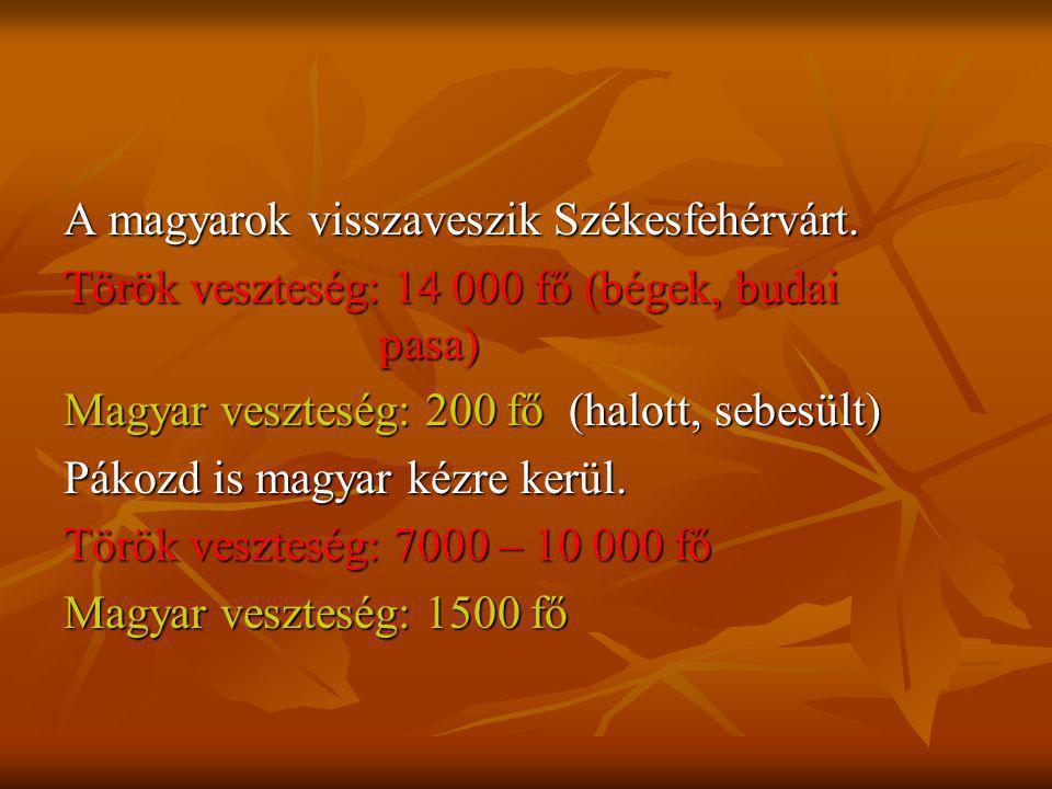 A magyarok visszaveszik Székesfehérvárt.