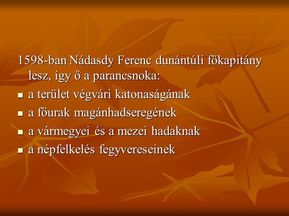 1598-ban Nádasdy Ferenc dunántúli főkapitány lesz, így ő a parancsnoka: