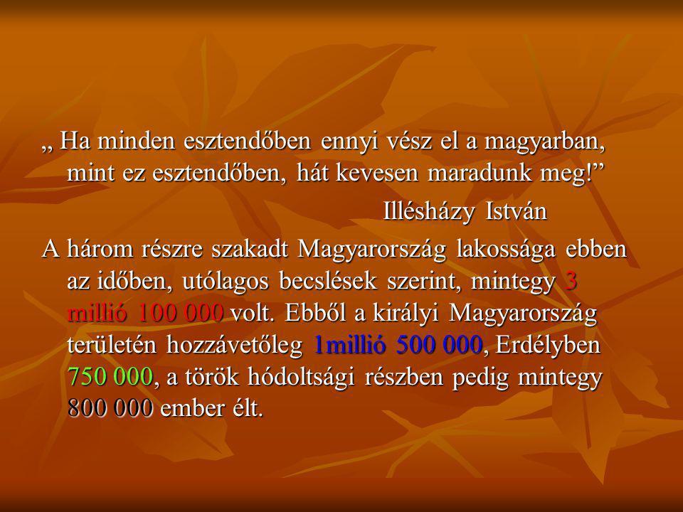 """"""" Ha minden esztendőben ennyi vész el a magyarban, mint ez esztendőben, hát kevesen maradunk meg!"""