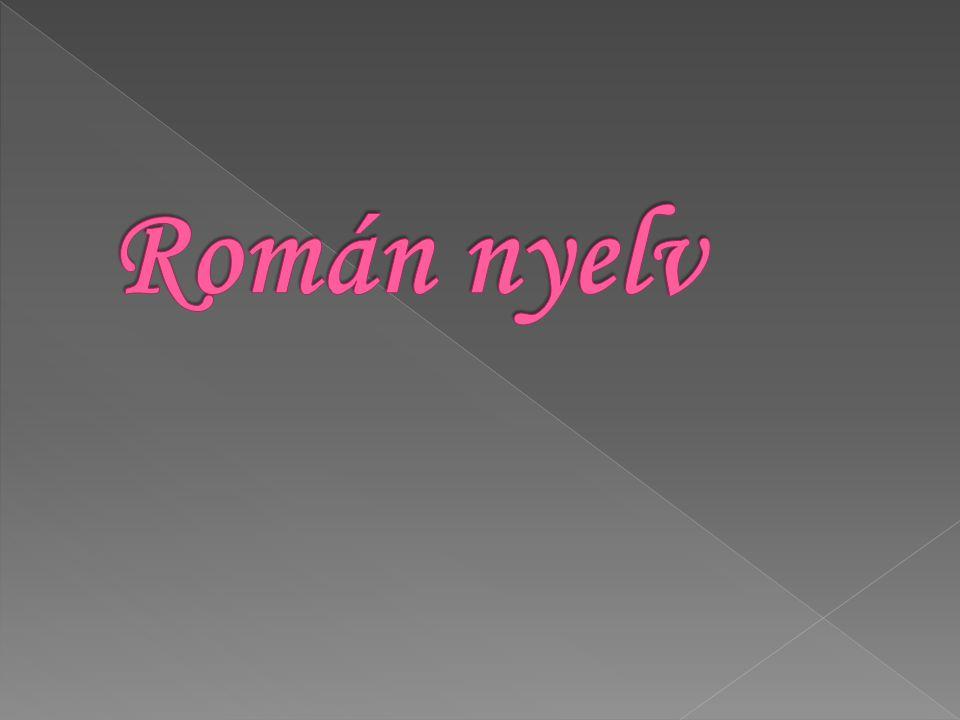 Román nyelv