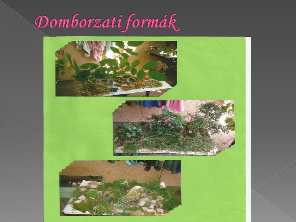 Domborzati formák